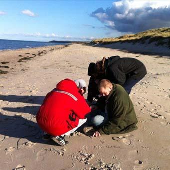 afgiftningstur på stranden